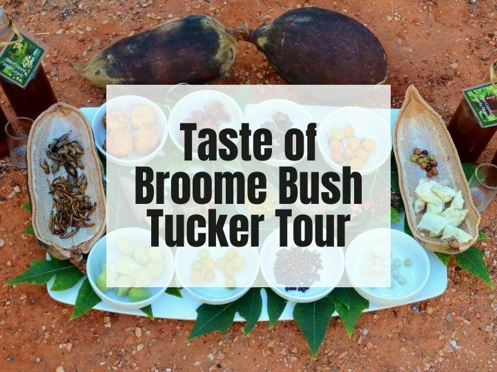 Taste of Broome Tour